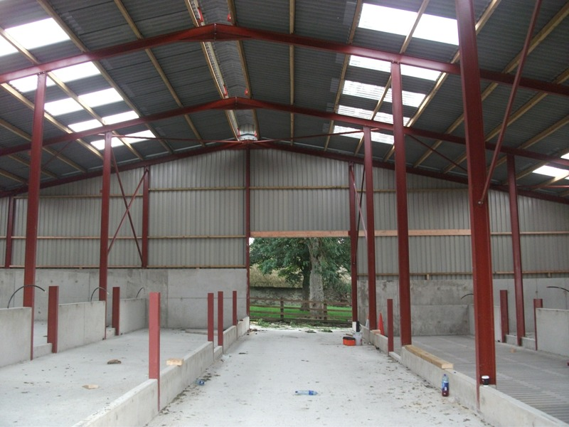 new build cattle shed in co louth using rilco products. Black Bedroom Furniture Sets. Home Design Ideas